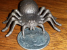 Spider 3d printed