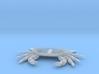 crab ventral 3d printed