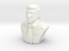 Donald Trump-Ceramic  3d printed