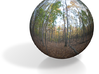 """Forest PanoSphere - upstate New York (1"""") 3d printed"""