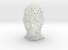 Mesh Head 3d printed