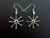 Asterionella Diatom Earrings - Science Jewelry 3d printed Asterionella earrings in polished silver