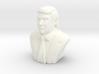 Donald Trump 3d printed