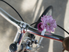 Bud Vase for your Bike 3d printed