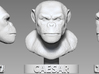 Caesar The Ape 3d printed Original render of the ZBrush sculpture in the form of a bust.