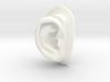 DIY Binaural Ear + Canal Anatomically Accurate - R 3d printed