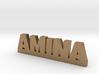 AMINA Lucky 3d printed