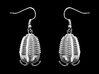 Trilobites Earrings 3d printed Trilobites Earrings in Raw Silver