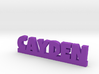 CAYDEN Lucky 3d printed