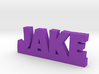 JAKE Lucky 3d printed