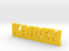 KAIDEN Lucky 3d printed