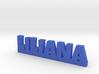LILIANA Lucky 3d printed