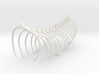 Komodo Spine Rib Cage 1:5 Scale 3d printed