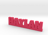 HAYLAN Lucky 3d printed