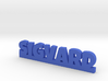SIGVARD Lucky 3d printed