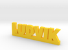 LUDVIK Lucky 3d printed