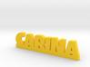 CARINA Lucky 3d printed