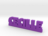 CECILLE Lucky 3d printed