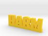 HARM Lucky 3d printed