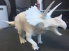 Triceratops (Medium/Large size) 3d printed