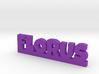 FLORUS Lucky 3d printed