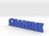 CHANINE Lucky 3d printed