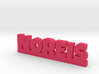 NOREIS Lucky 3d printed