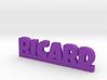 RICARD Lucky 3d printed
