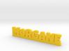 MORGANE Lucky 3d printed