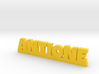 ANTIONE Lucky 3d printed