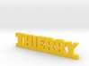 THIERRY Lucky 3d printed