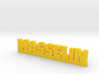 MASSELIN Lucky 3d printed