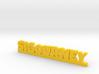 SIGOURNEY Lucky 3d printed