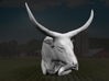 Ankole-Watusi 1:12 Lying Female 2 3d printed