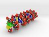 DNA Molecule. 3d printed