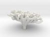 Staghorn Coral 2 3d printed