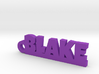 BLAKE Keychain Lucky 3d printed