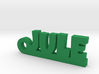 JULE Keychain Lucky 3d printed
