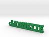 LYONETTE Keychain Lucky 3d printed