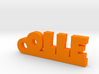 OLLE Keychain Lucky 3d printed