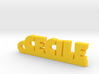 CECILE Keychain Lucky 3d printed
