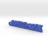 AMBROISE Keychain Lucky 3d printed