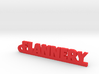 FLANNERY Keychain Lucky 3d printed