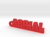ABRIAL Keychain Lucky 3d printed