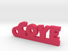 COYE Keychain Lucky 3d printed