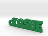 YOSHE Keychain Lucky 3d printed