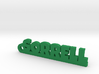 SORRELL Keychain Lucky 3d printed