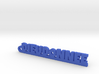 DIEUDONNEE Keychain Lucky 3d printed