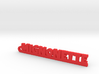 MIGNONETTE Keychain Lucky 3d printed