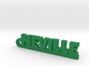 NEVILLE Keychain Lucky 3d printed